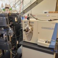 Central Analytical Mass Spectrometry Facility
